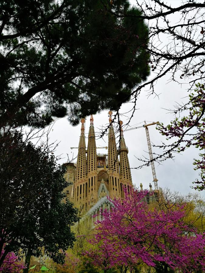 sagrada-familia-barcelona-3