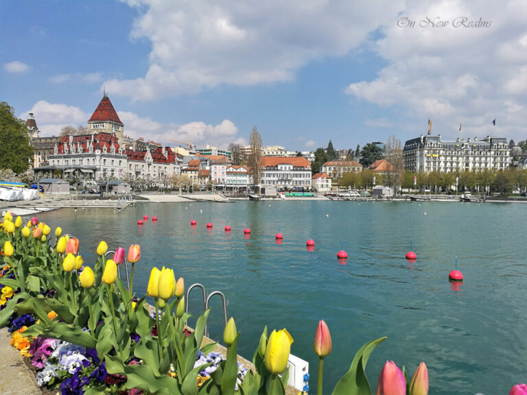 Port-DOuchy-Lausanne-Switzerland