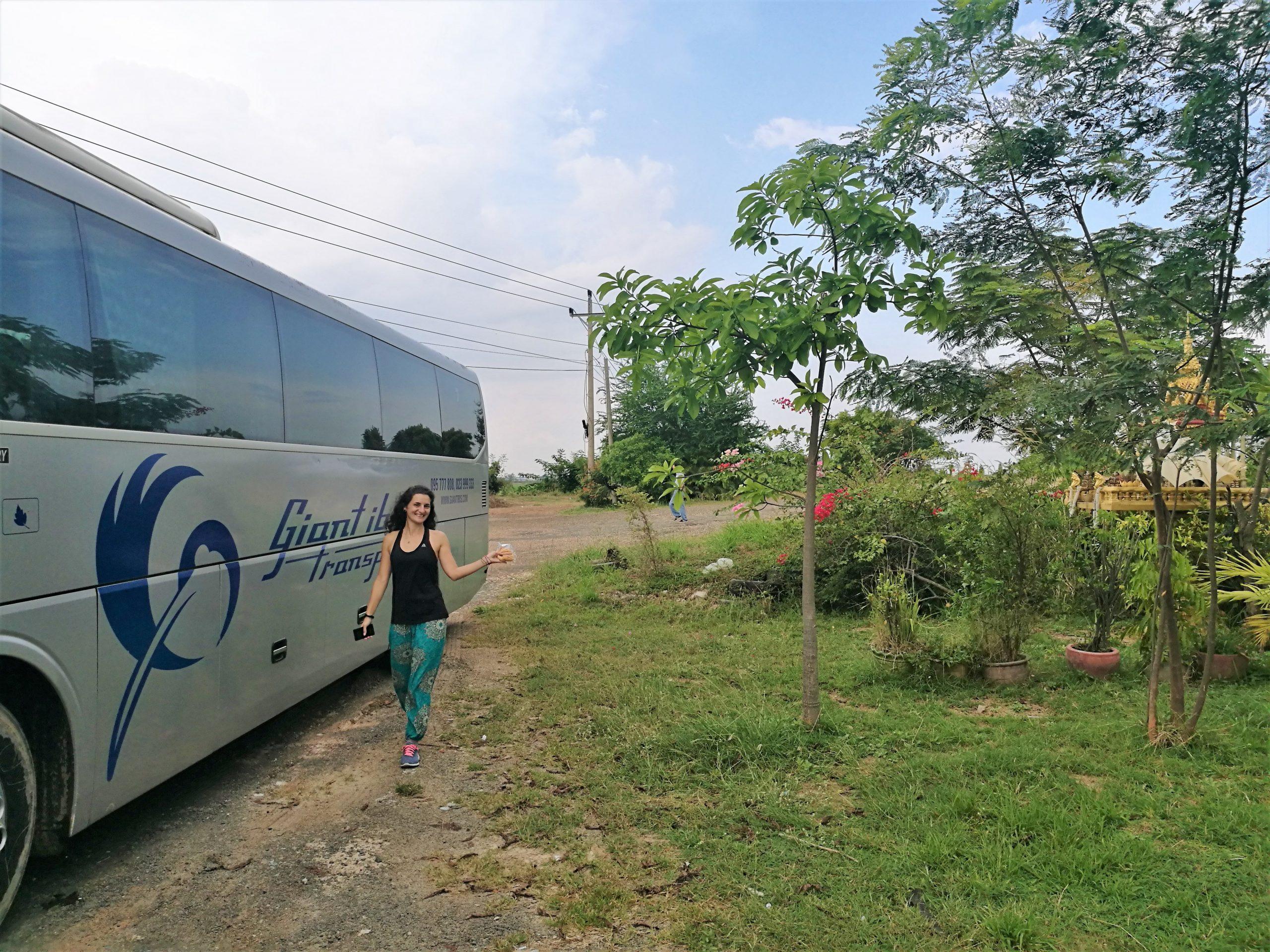 Phnom-Penh-Siem-Reap-Giant-Ibis-scaled